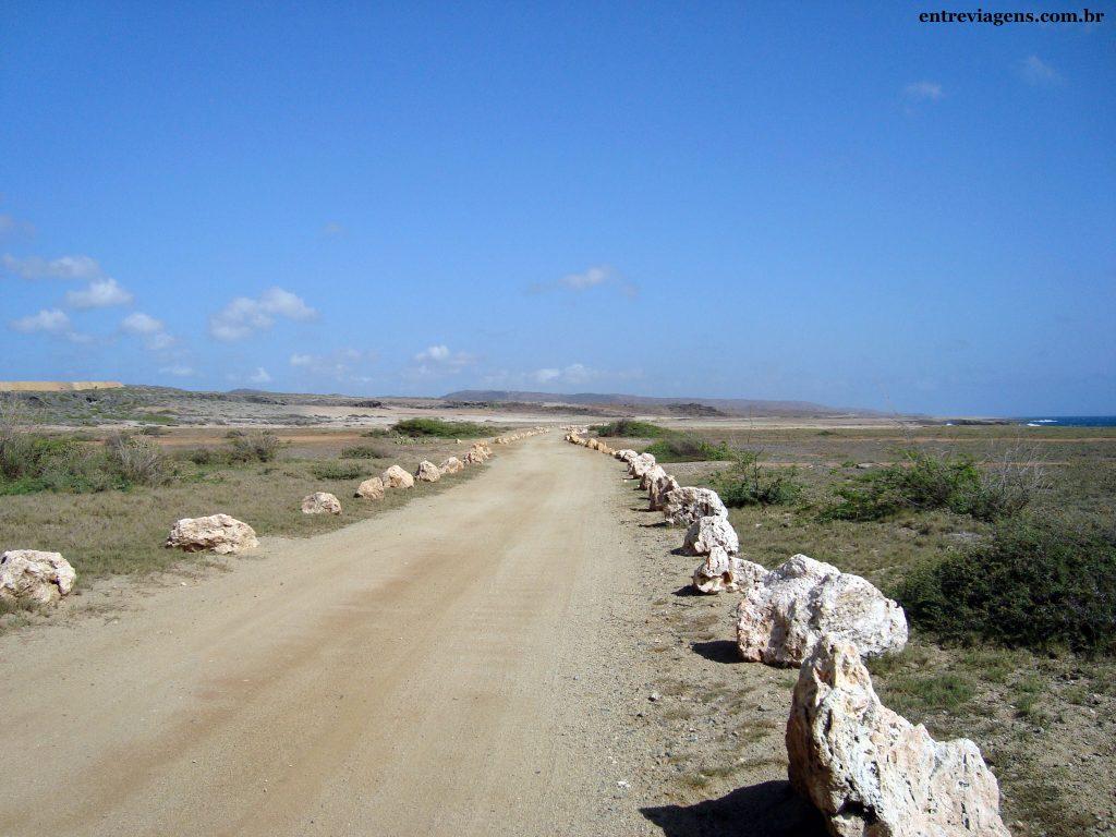 ARUBA-Paisagem-árida-deserta