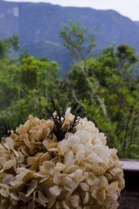 Morada-dos-Canyons-detalhe-vista