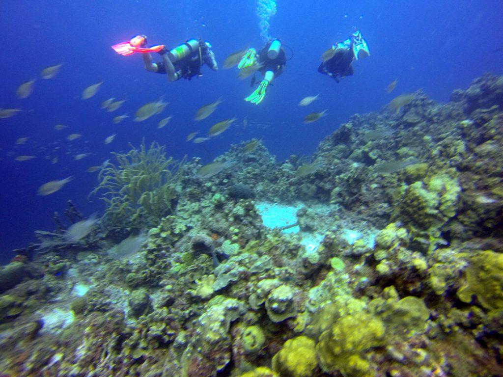 mergulho-em-Curaçao