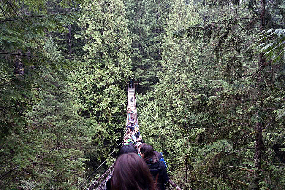 Vancouver-lynn-canyon