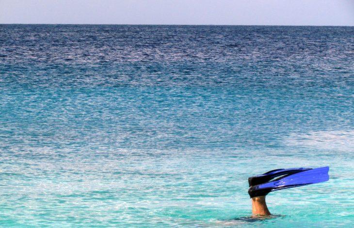 Mergulhos e Snorkeling em Curaçao – muita beleza embaixo d'água!